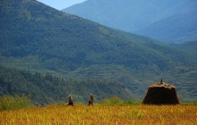 APN Second Science-Policy Dialogue: South Asia Global Climate Change: Reducing Risk & Increasing Resilience 19-21 January 2015, Bhutan The world is moving into global climate change regimes that have no […]
