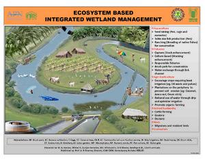 Poster 4-wetland management.pdf