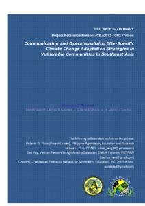 CBA2013-13NSY-Visco_Final Project Report.pdf